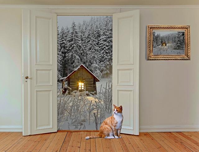 Eine orange-getigerte Katze sitzt auf hellem Holzboden. Durch die geöffnete Tür hinter ihr sieht man eine Schneelandschaft mit einer Holzhütte. An der Wand hängt ein Bild im Goldrahmen.