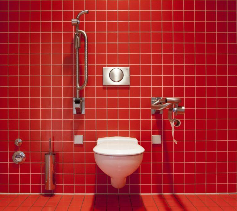 Eine große rot geflieste Wand, an welcher ein WC angebracht ist. Neben dem WC samt Drückerplatte gibt es noch herunterklappbare Stützgestelle aus Edelstahl. Links neben dem WC befindet sich die Halterung für die Toilettenbürste und der Wasserzähler. Beides ebenso aus Edelstahl.