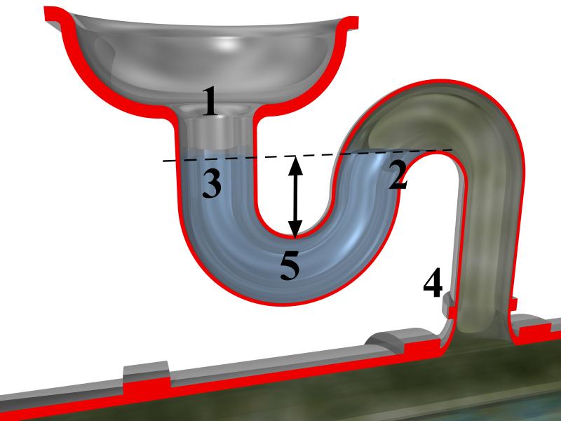Eine Abbildung eines Siphons, welche den Geruchsverschluss mithilfe des abfließenden Wassers zeigt. Man sieht in dieser Grafik den Weg des Abwassers vom Spülbecken zum Abflussrohr.